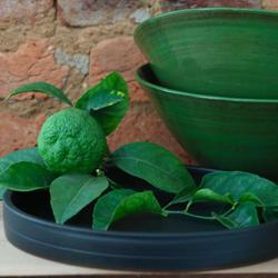 Thrown bowls, Enamel green and Matt black